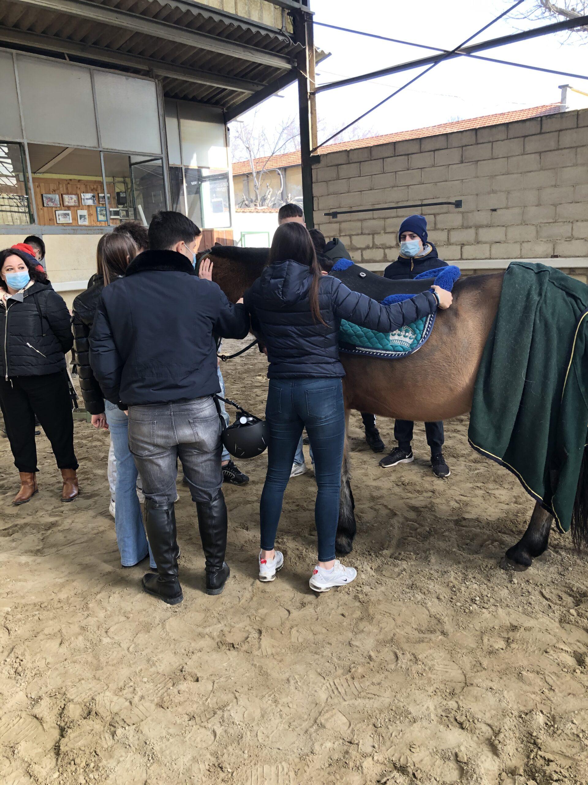 equitazione labor5