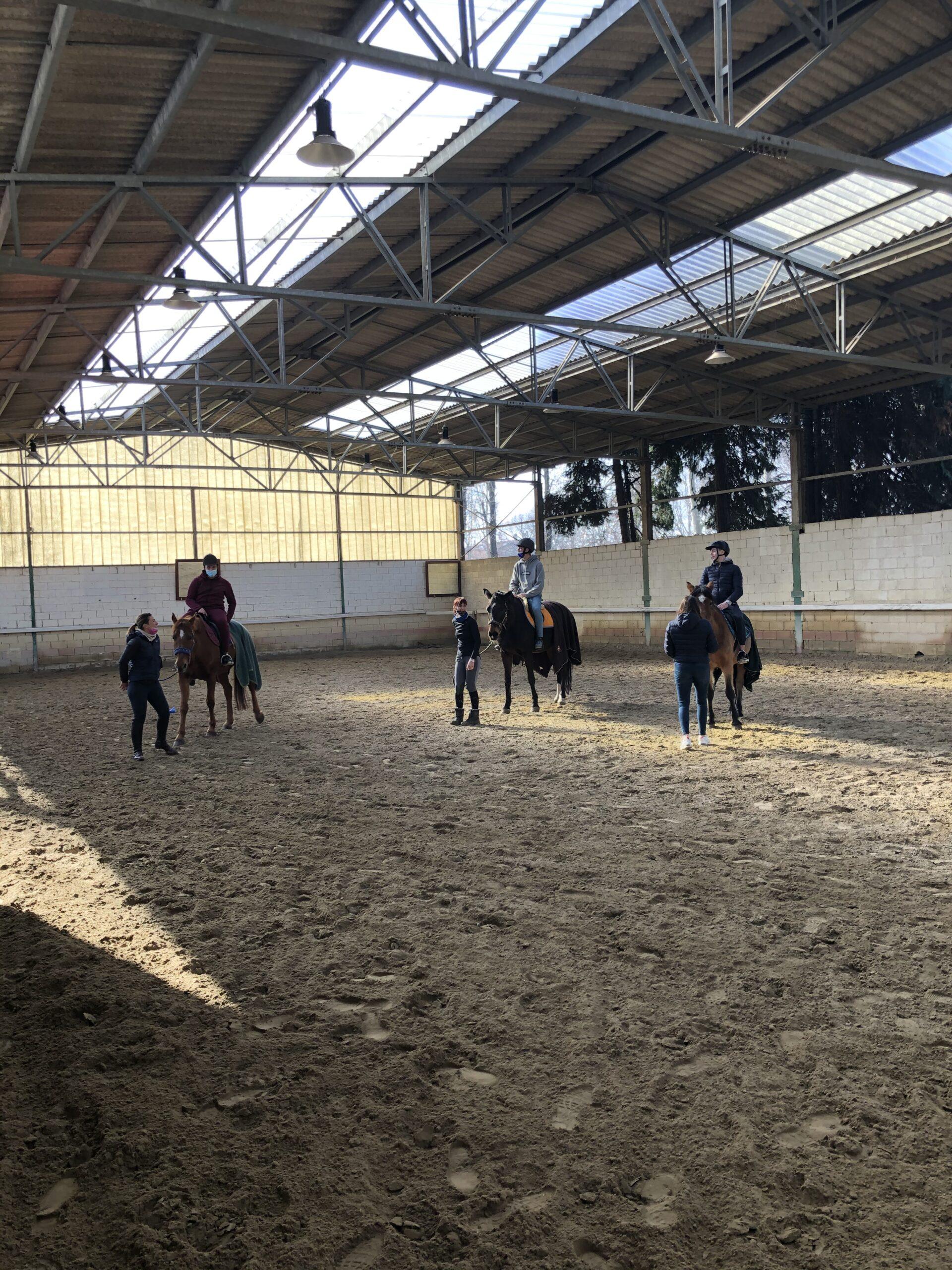 equitazione labor6