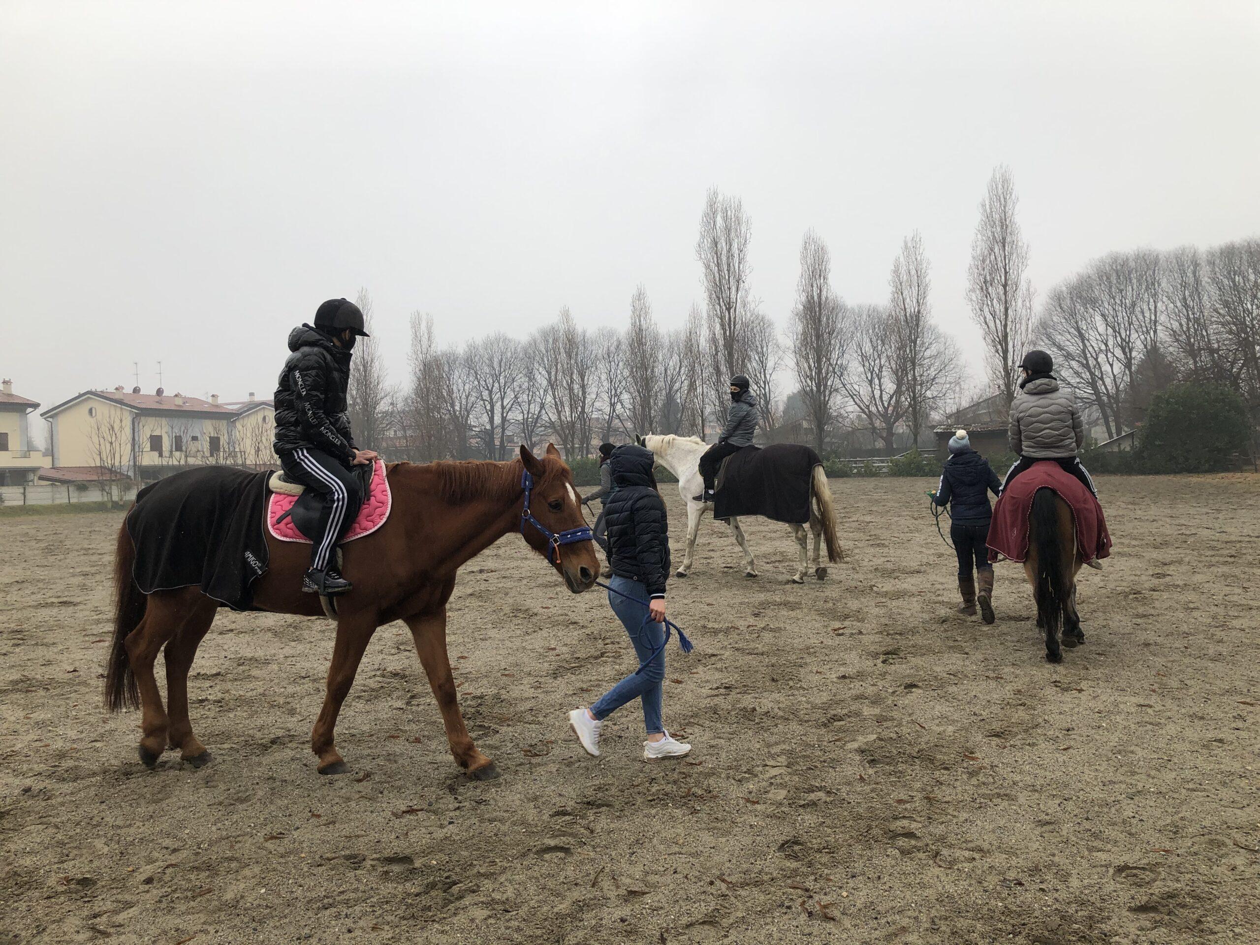 equitazione labor4